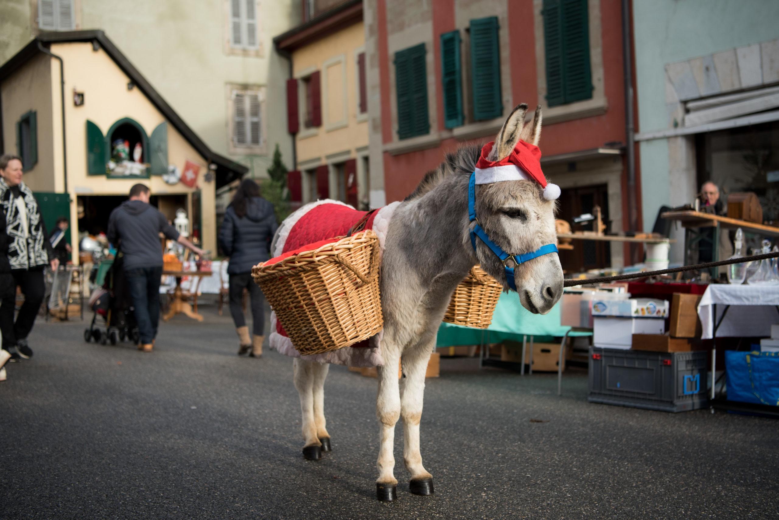 Puces de Noël du Quartier de Rive par Joao Cardoso_7